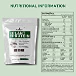 Nutrazee 100% Plant Based Protein Powder Blend, Natural Chocolate Flavour, Vegan Gluten Free, Lactose Free, Added…