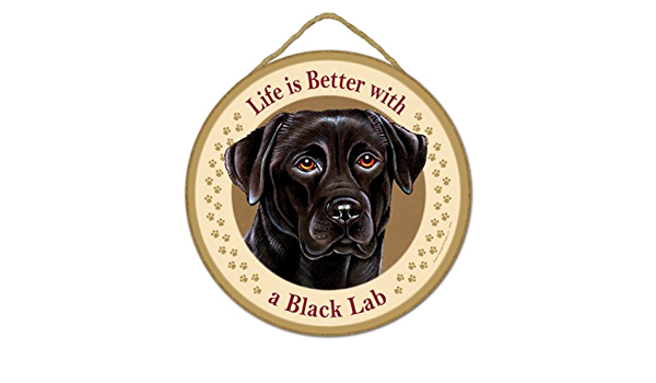 Details about  /Dog Plaque Life is Better With A Labrador Retriever