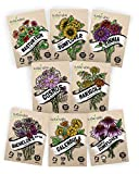 Flower Seeds Variety Pack - 100% Non GMO - Zinnia, Cosmos, Sunflower, Bachelor Button, Calendula, Nasturtium, Marigold, Coneflower for Planting in Your Garden
