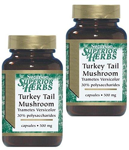 (Swanson Superior Herbs Turkey Tail Mushroom 500mg -- 2 Bottles each of 120 Capsules)
