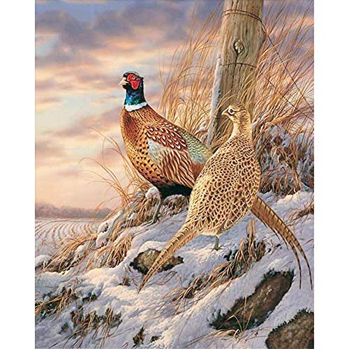 - LIPHISFUN Diamond Painting Kits for Adults Full Drill Square Resin Rhinestone Embroidery Unfinished Cross Stitch Home Decor Gift Wildlife Birds(30x40cm)