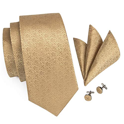 CAOFENVOO Gold Solids Silk Tie Formal Wedding Necktie -