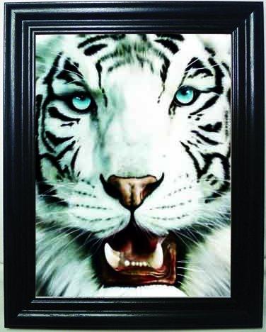 Amazon.com: WHITE TIGER 3D FRAMED Wall Art-Lenticular Technology ...