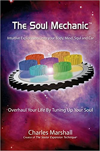 Book The Soul Mechanic