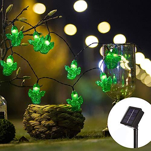 Cactus Lights Outdoor