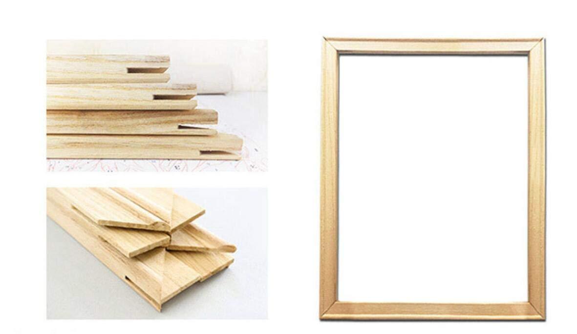 Agolong Agolong Agolong DIY Malen nach Zahlen Bunte Katze Acryl Malerei Moderne Bild Home Decor für Wohnzimmer Mit Rahmen 40x50cm B07LB12NRH | Günstig  ff4067