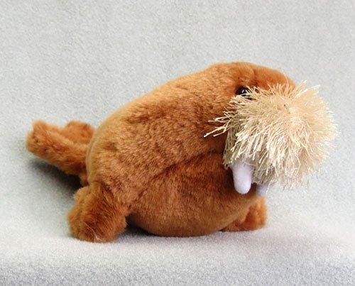 Walrus Stuffed Animal 7 inches long - F3554 B221