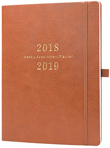2018-2019 Planner - Academic Weekly Planner/Appointment Book, Weekly Appointment Planner, DayMinder Daily Hourly Planner, 8