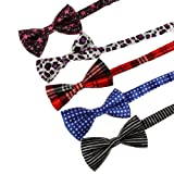 DBF0120 Multi Poly Pre-Tied Bow Ties For Wedding Mens 5 Package Pre-tied Bowties Set Gift Ideas By Dan Smith