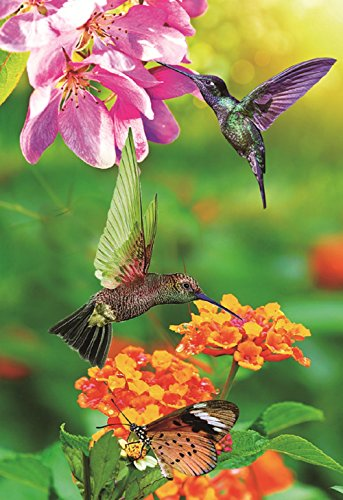 Judys Flag Hummingbird Garden Flag Colorful Spring Summer Blooms Double Sided 12.5'' X 18''