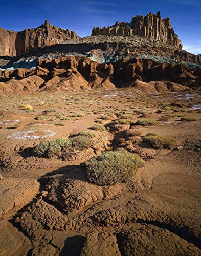 Barren Landscape, The Castle, Capitol Reef National Park, landscape photo, nature photography, wall art, home decor, office decor, sizes up to 44x66 inches, fine art print, signed by the artist.