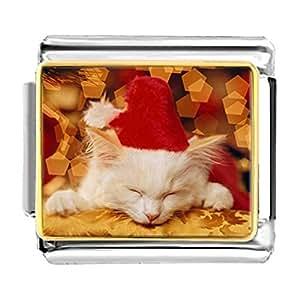 Chicforest Gold Plated Sleeping Santa Kitten Bracelet Link Photo Italian Charm
