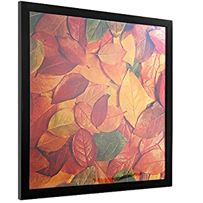 """13""""x13"""" Square Record Album Black Picture Poster Frame - outer size 13.81x13.81 Wall and Table top Picture Frames for picture without mat 13x13(If with mat,Not Include)12.5x12.5, 12 etc. (PFSQ 13"""" BA) - PRICE FOR 1 PCS , INSTALL NOTED: thin frame to 0.48"""", frame out size 0.48x13.81x13.81; accepted Picture (or mat/not included) out size 13x13 window size 12.6x12.6 Insert paper image is random, can't direct as a display photo. HIGHEST QUALITY MATERIAL: Whole Acid free/ HIGH TRANSMITTANCE PC Transparent protective sheet instead old design glass MORE SAFETY, Double hanging buckle on back, Easy switch view of vertical and transverse It can be as record frame for Album Covers and LP Covers; will make your album stand out. IDEAL FOR PICTURE SIZE: It comes without mat for size 13""""x13"""", If you using mat (not included) can be for 11x11 10x10 8x8 etc. - picture-frames, bedroom-decor, bedroom - 51k Gf5QZDL. SS400  -"""