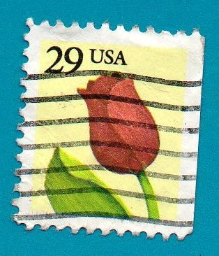 Used US Postage Stamp (1991) 29c Tulip Scott #2527