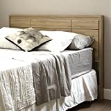 South Shore Furniture Gravity Queen Headboard (60-Inch), Rustic Oak