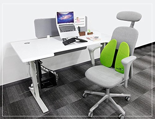 Emperor of Gadgets Patented Posture Back Support for Desk Chairs - Ergonomic Low Pressure Lumbar Back Support for All Types of Office Chairs by Emperor of Gadgets (Image #3)