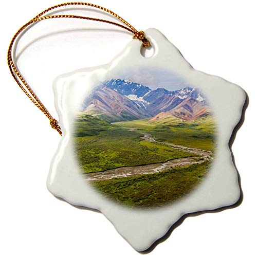 3dRose Danita Delimont - Alaska - USA, Alaska, Denali National Park. Mountains and Polychrome Pass. - 3 inch Snowflake Porcelain Ornament ()