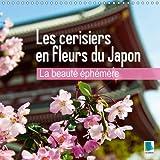 La beauté éphémère - les cerisiers en fleurs du Japon : Les fleurs du printemps. Calendrier mural 2017