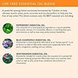 Live-Free-Pain-Relief-Synergy-Blend-Essential-Oil-100-Pure-Natural-Therapeutic-Grade-10-ml-Anti-Inflammatory-Helps-with-Muscle-Aches-Joint-Soreness-and-Discomfort-By-7-Jardins