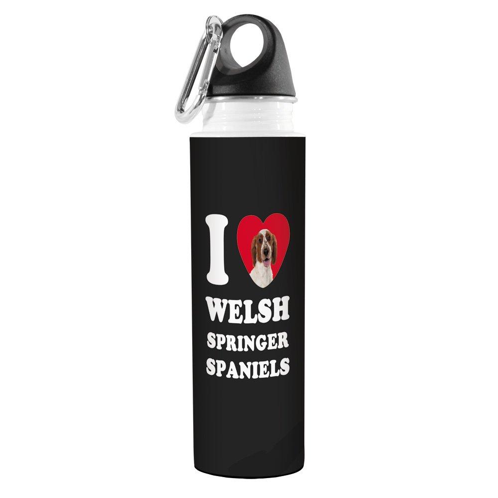 Tree-Free Greetings VB49138 I Heart Welsh Springer Spaniels Artful Traveler Stainless Water Bottle 18-Ounce Tree Free