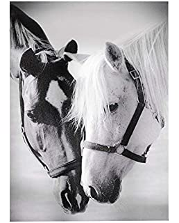 gift craft framed canvas print horse pals