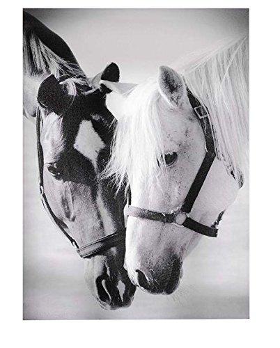 Gift Craft Framed Canvas Print, Horse Pals
