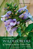 Field Guide to Wildflowers of Nebraska and the Great Plains: Second Edition (Bur Oak Guide)