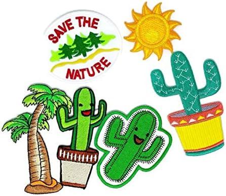 Juego de 4 cactus árbol de coco para guardar la naturaleza D.I.Y. ...