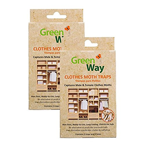 Clothes Moth Trap (GreenWay Clothes Moth Traps (2 pack) | Pheromone Attractant, Ready To Use | Heavy Duty Glue, Safe, Non-Toxic with No Insecticides or Odor, Eco Friendly, Kid and Pet Safe)