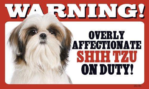 - Warning Overly Affectionate Shih Tzu On Duty