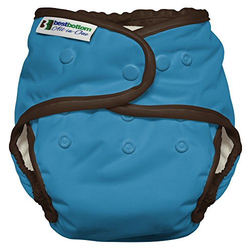 Best Bottom Heavy Wetter AIO, Cookie Monster (Diaper Cookie)