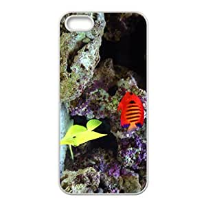 Sea Fishs Hight Quality Plastic Case for Iphone 5s
