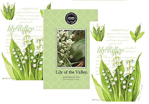 Pack of 3 Large Lily of the Valley Scented Sachets Fresh Scents Bridgewater