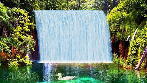 Pristine Waterfall [Download] by Waterfall Animation