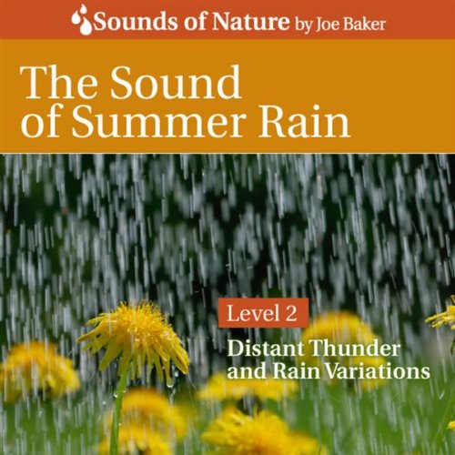 The Sound of Summer Rain (Best White Noise For Working)