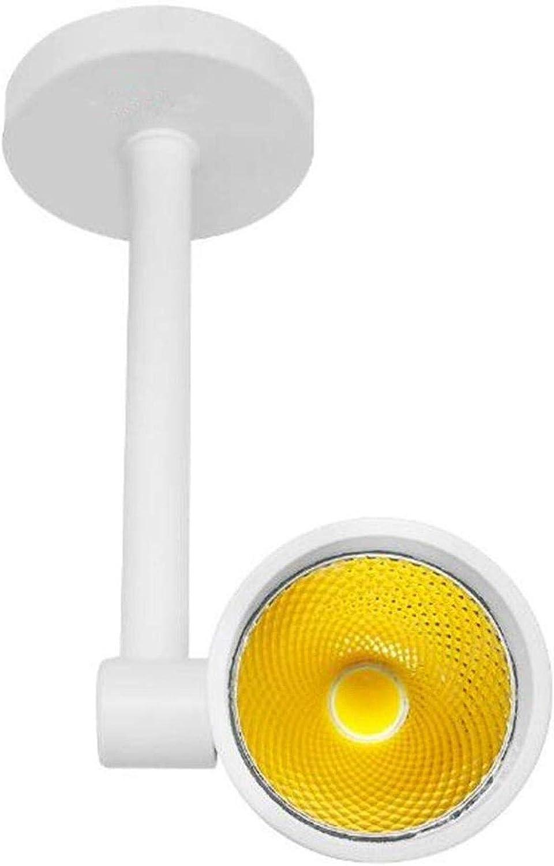 Einstellbare Spots LED-Deckenstrahler Modernes Design l Umweltfreundliche Lichtquelle | Warmwei/ß 3000K 1 x 7 W 550 Lumen AC 220V