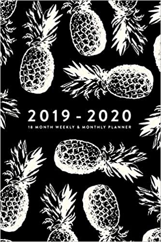 2019 - 2020 | 18 Month Weekly & Monthly Planner (2019 2020 ...