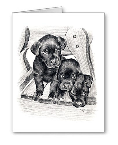 ''Black Lab Puppies'' - Set of 10 Note Cards With Envelopes by DJ Rogers Fine Art