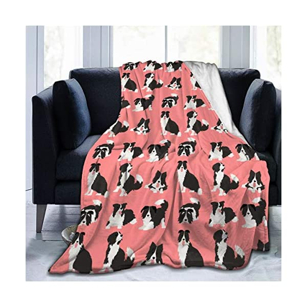 """WdRaIn Border Collie Dog Cute Blanket Flannel Fleece Blanket Soft Microfiber Blanket for Sofa Office Bed and Travelling 50""""x40"""" 1"""