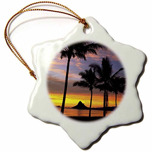 3dRose orn_89539_1 Chinamans Hat, Kaneohe Bay, Oahu, Hawaii - US12 DPB0103 - Douglas Peebles - Snowflake Ornament, Porcelain, 3-Inch by 3dRose