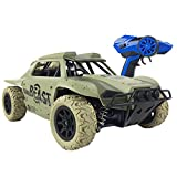 Remote Control Car,1:18 Scale 4WD RC Rally Car-2.4Ghz Radio Controled Electric High Speed Car-15.5Mph Monster Truck Off-Road Vehicle for Kids and Adults(Green)