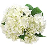 Felice Arts Artificial Flowers 18'' Silk 7 Big Head Hydrangea Bouquet Wedding, Room, Home, Hotel, Party Decoration (1 Cream)