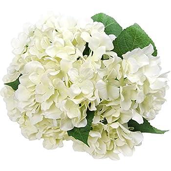 amazon com silk hydrange white 5 heads soledi artificial flower