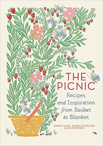 Essay my picnic party ideas