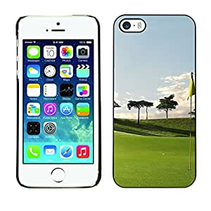 - Golf Ball Pattern - - Monedero pared Design Premium cuero del tir¨®n magn¨¦tico delgado del caso de la cubierta pata de ca FOR Apple iPhone 5 5S Funny House