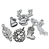 Best Housweety Wine Makings - HOUSWEETY 30PCs Mixed Silver Tone Valentines Charms Pendants Review