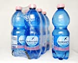 Image of San Benedetto Still Water, 16.9 Ounce Plastic Bottles (Pack of 24)