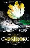 Evermore 3 - Das Schattenland: Roman