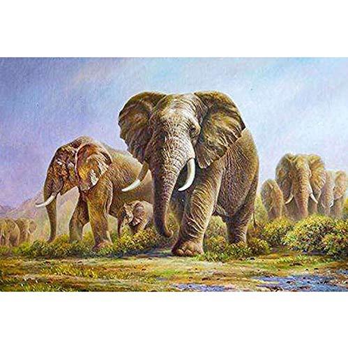 100% autentico HPCAGLL Diamante Diamante Diamante Pintura 5D Bricolaje Diamante Lleno Animal Elefante  n ° 1 en línea