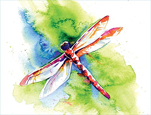 Note Cards - Flying Colors Dragonfly - Set of 12 Premium Blank Note Cards and Matching Envelopes by Peaks Publishing Inc